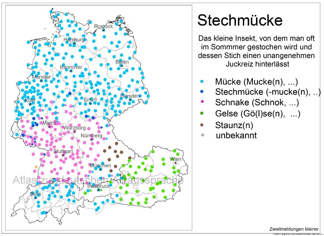 11_4d_Stechmuecke