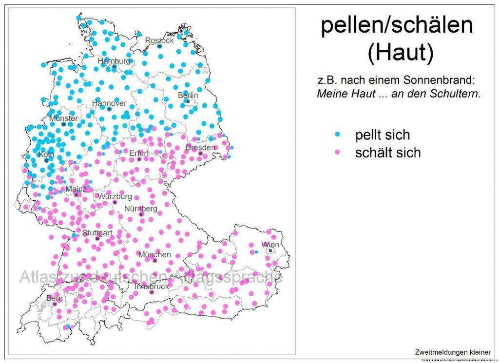 11_5c_Haut_pellt